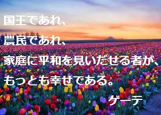 ゲーテ21.jpg