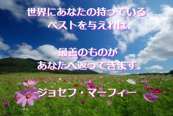 マフ01.jpg