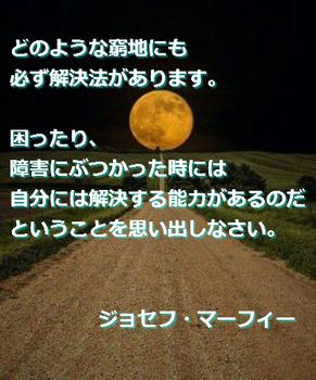 マフ15.jpg
