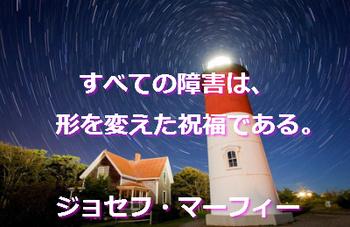 マフ32.jpg